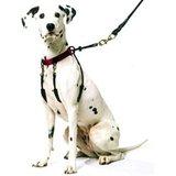 Yuppie Puppy anti trektuig large_