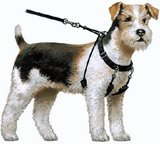Yuppie Puppy Anti trektuig small_