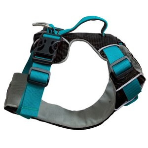 SOTNOS TRAVEL SAFETY & WALKING HARNESS M